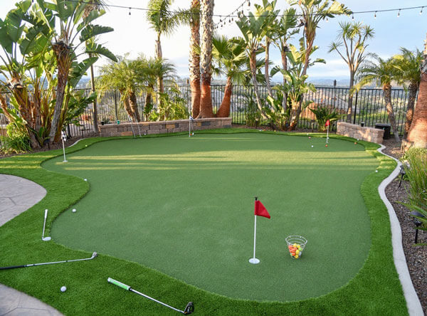 Putting green area with palm trees surrounding the grass.