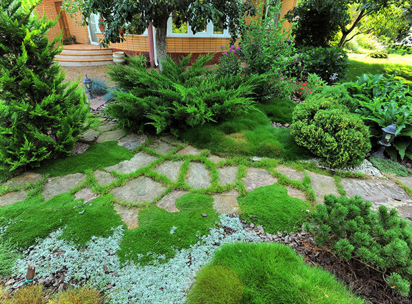 Green landscape with giant flagstone pavers as a walkway.