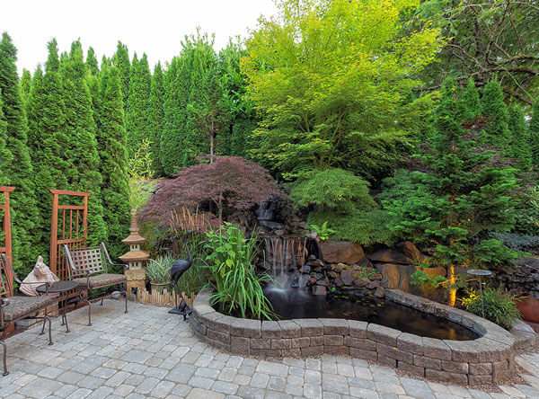 Garden area with thick trees and a pond.