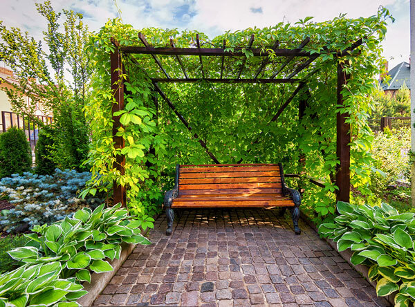 Shaded wooden bench surrounded by a beautiful flower garden.