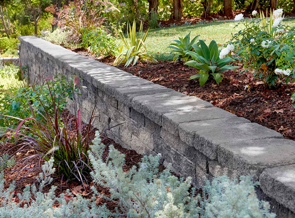 Retaining wall with different plants and flowers.