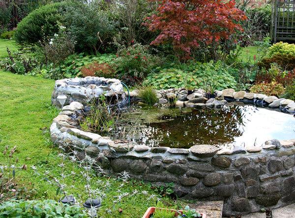 Pond next to grass and garden.