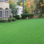 San Diego Landscape Turf Installation Company