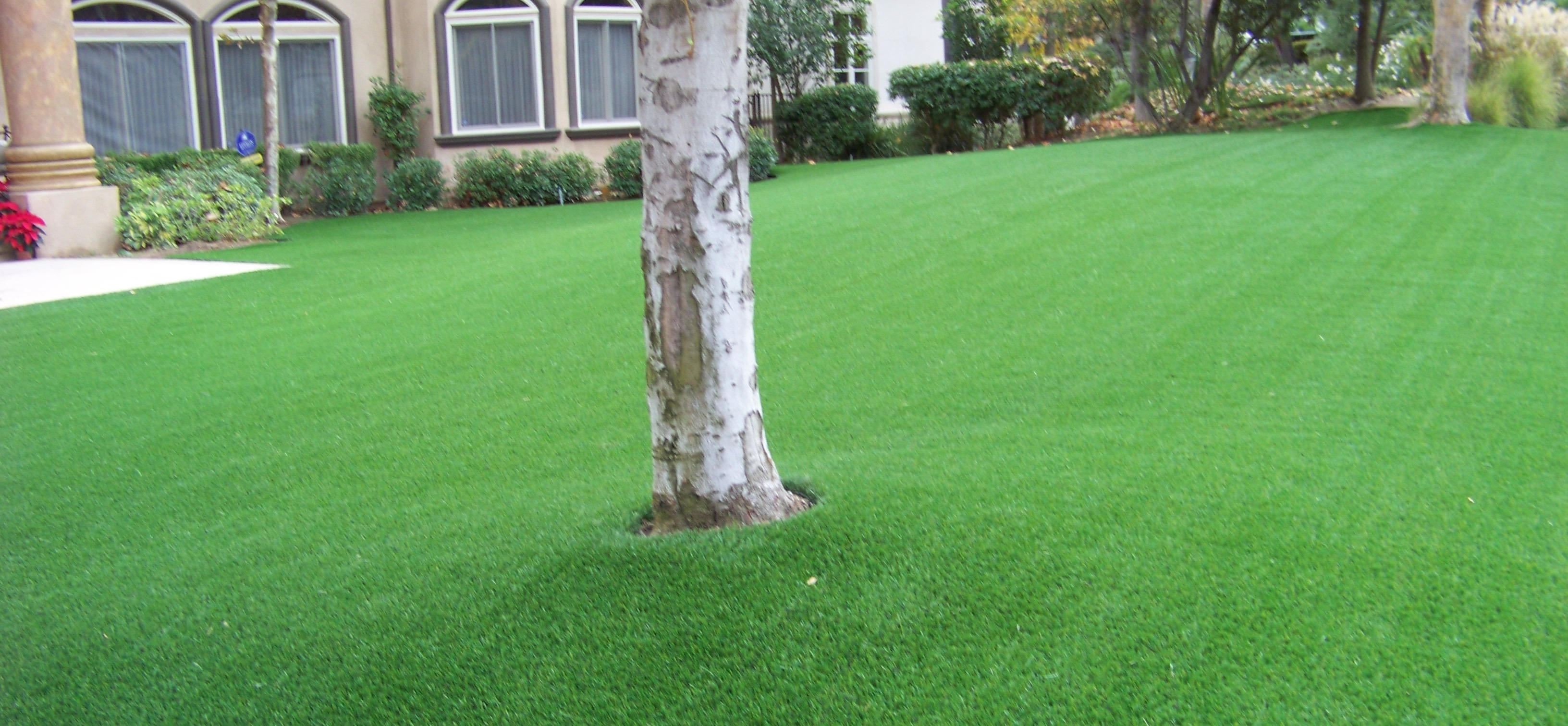 Synthetic Turf & Artificial Grass Installers in San Diego CA