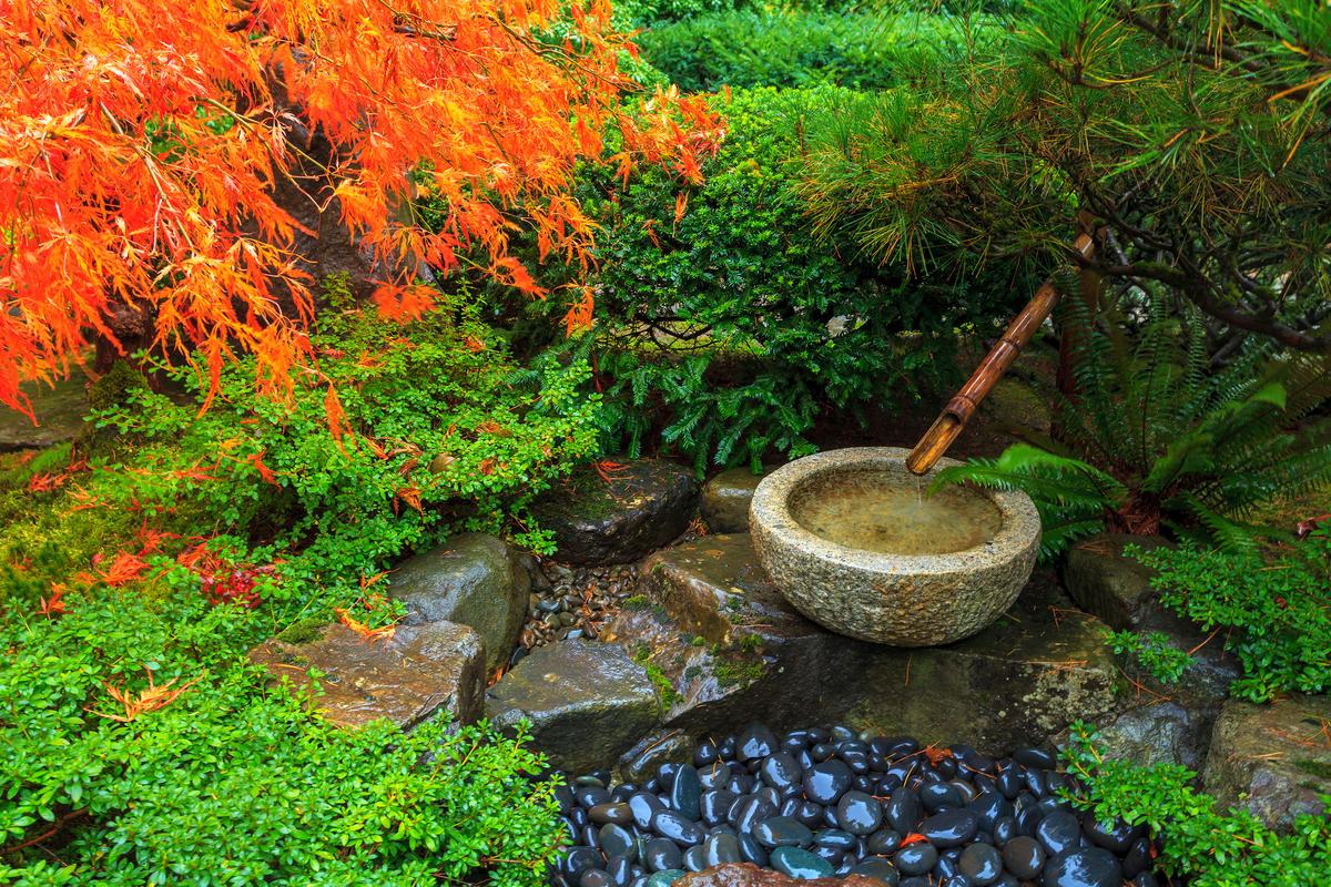 Create a Japanese Garden Tips