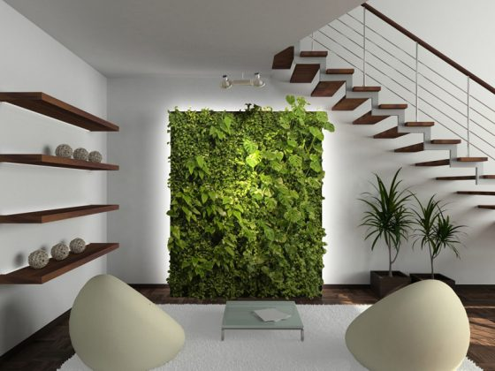 Ideas for building a Green Living Wall
