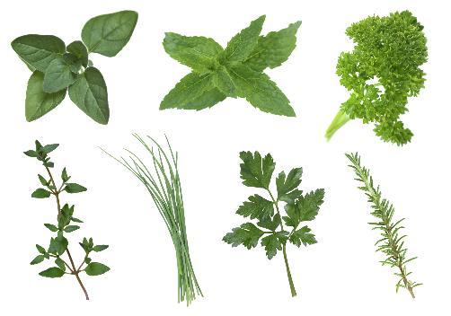 Herbs in a bottle