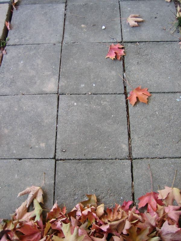 How to remove stains on concrete pavers