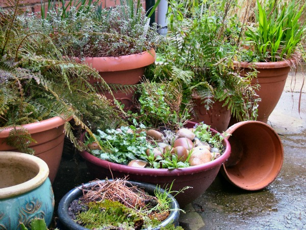 How to remove potted plant stains from concrete