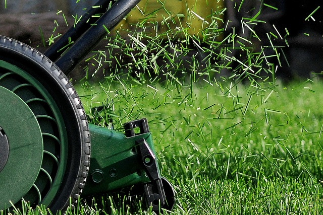 Lawn Clippings