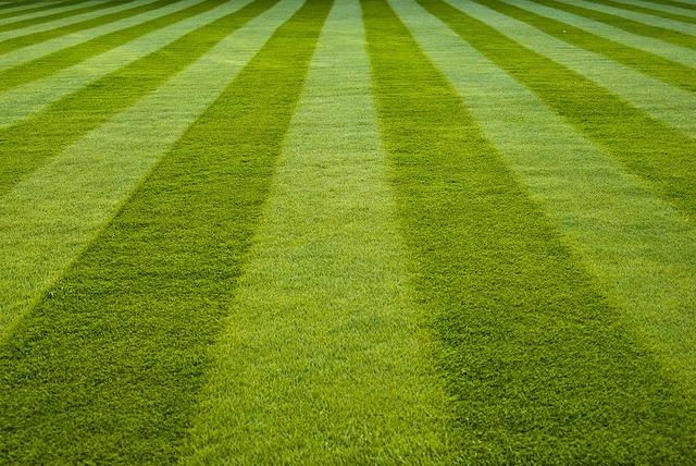 Lawn Striping