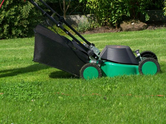 Why Choose Green Landscaping?