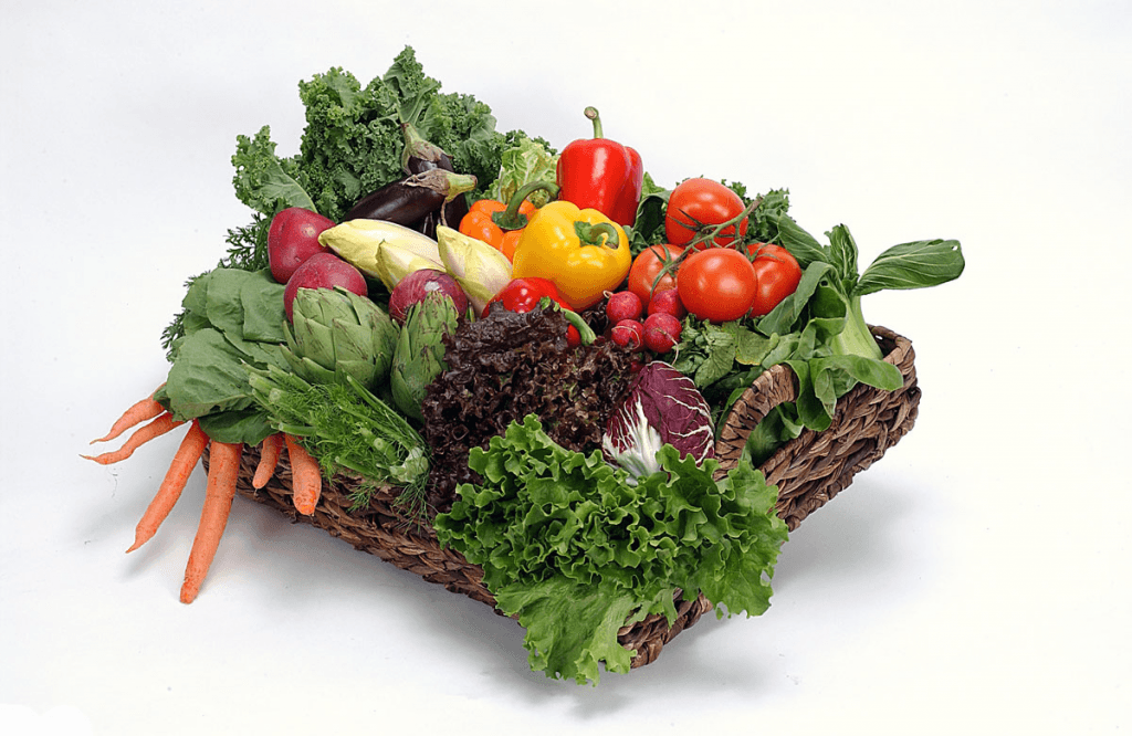 vegetable-garden-tips