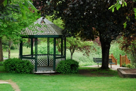 Landscaping Tips for Shade: Planting Shade Gardens