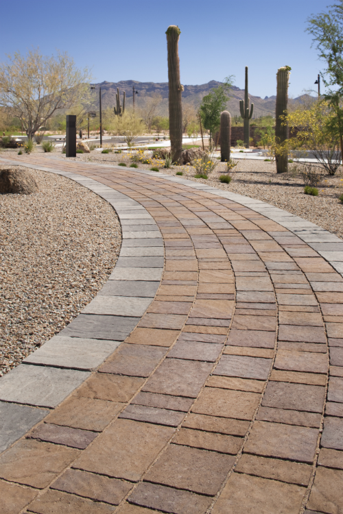 Xeriscaping Low maintenance landscaping
