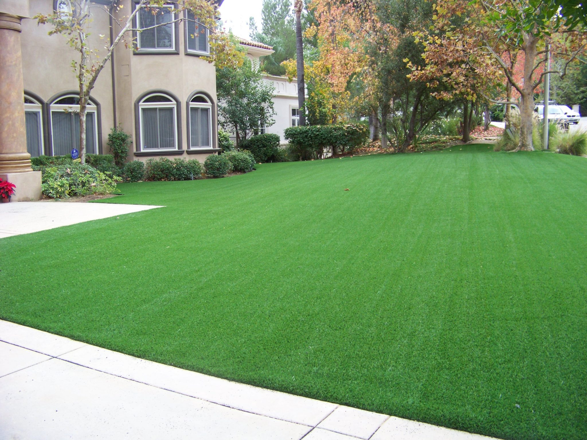 Fake Grass Yards : syntheticturfsandiego4