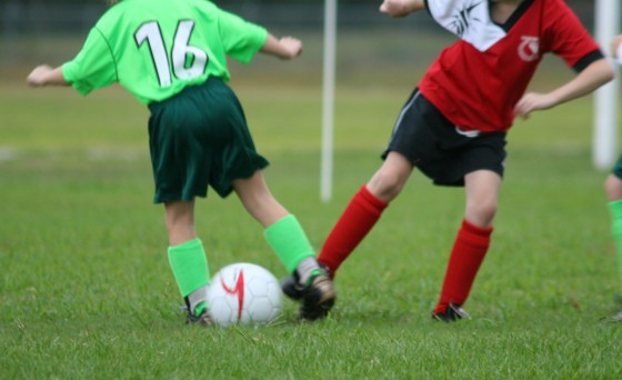 Which Artificial Grass Option Poses Fewer Tripping and Injury Hazards?
