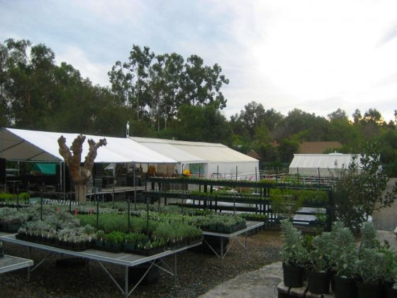 List of San Diego County Retail Nurseries