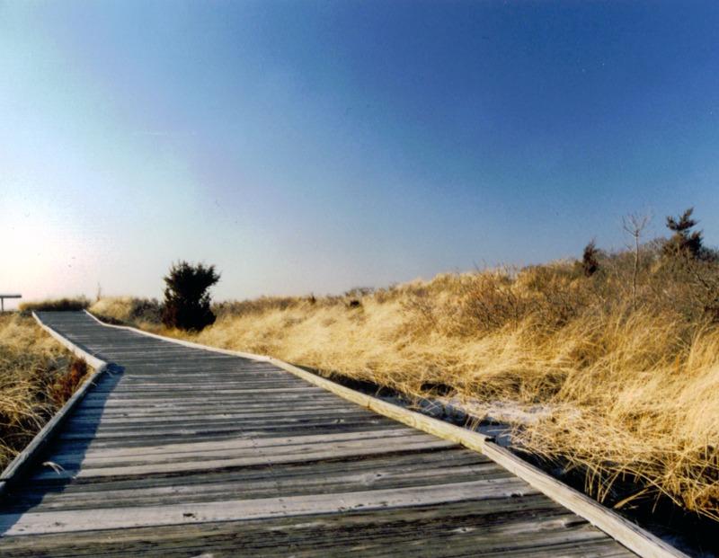 Beach Boardwalk