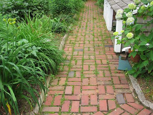 clay brick paver walkway