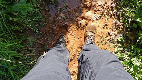 Why Clay Soil Needs TLC