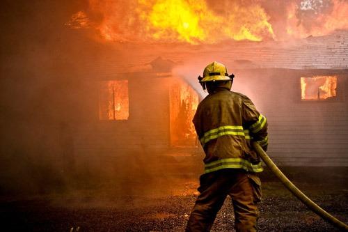 fire safe landscape san diego