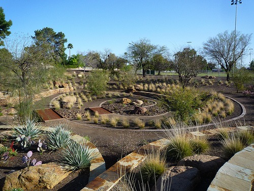 Xeriscaping in southern california is easy install it direct for Southern california landscaping ideas