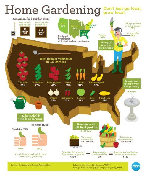Home gardening cost savings