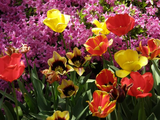 Add color with flowers.