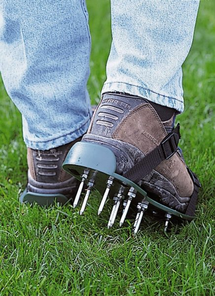 Cool Garden Tools and Gadgets You May Not Have Tried Yet