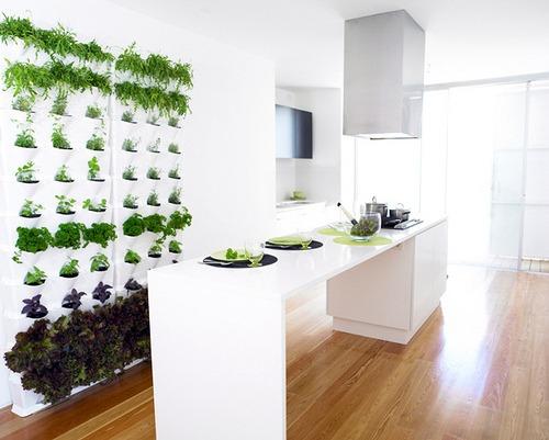 kitchen vertical garden