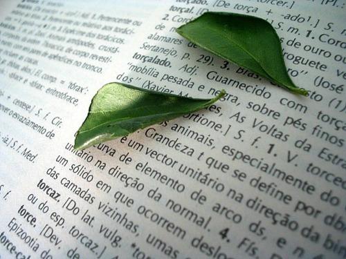 Methods for Pressing Leaves Flat: pressed leaves in book