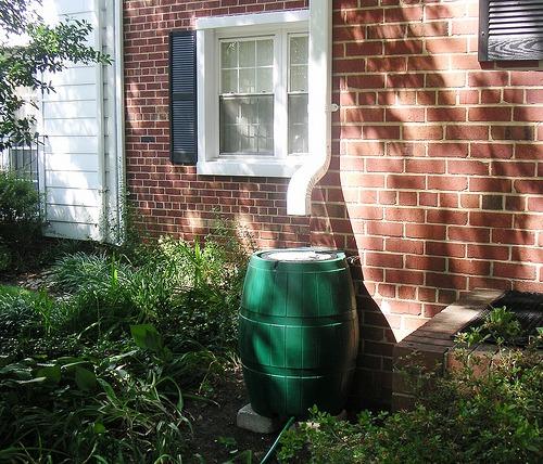 How to Harvest Rainwater Using Rain Barrels