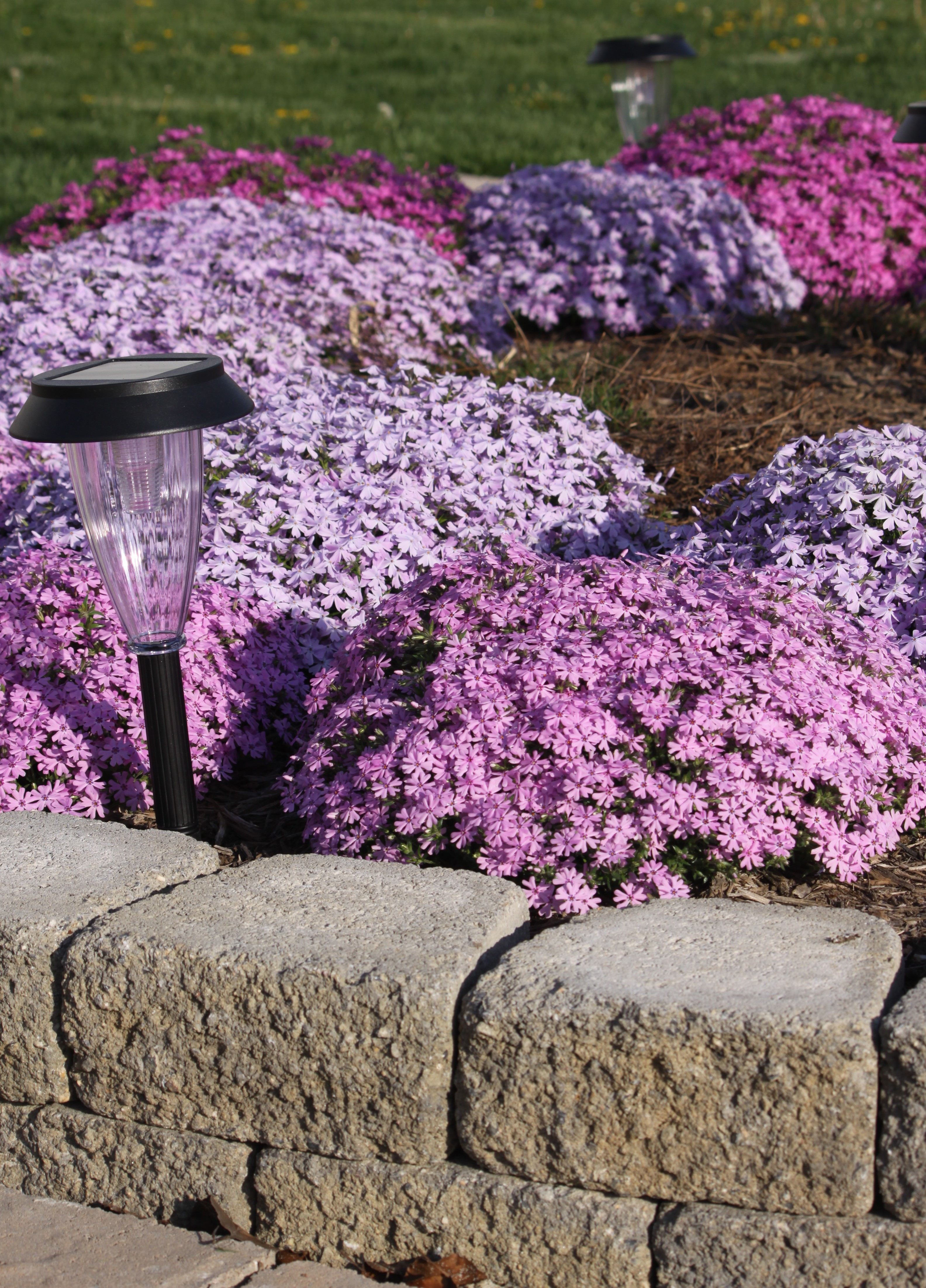 5 backyard improvement projects for any budget install it direct