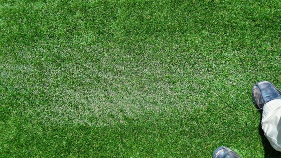 Melting Artificial Turf