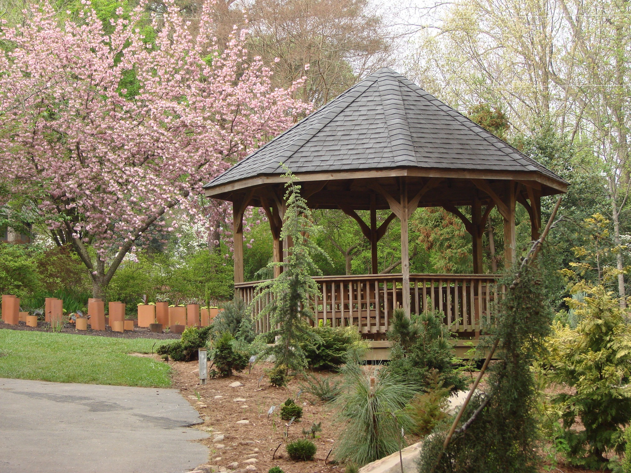 yard privacy: landscaping ideas