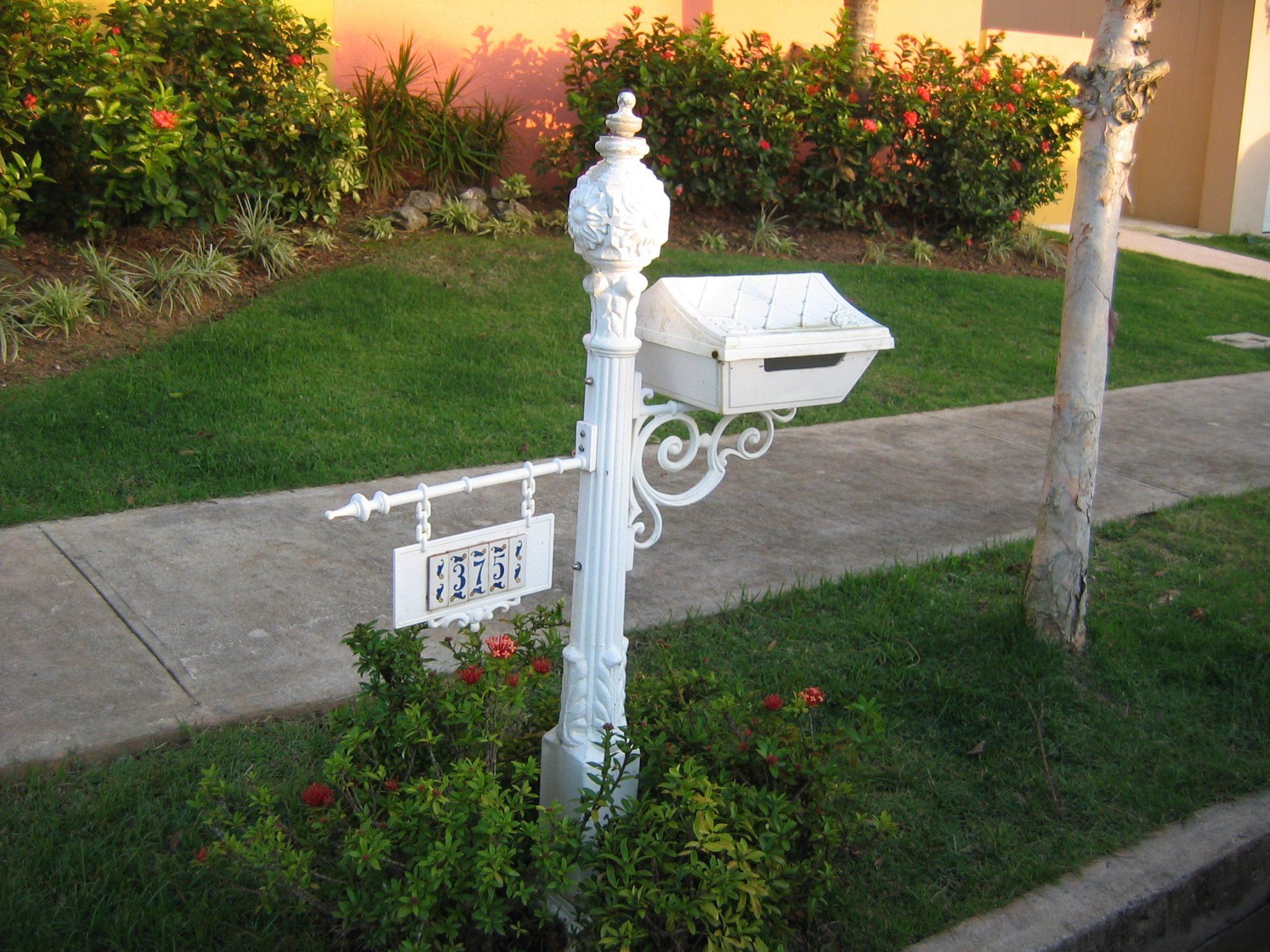 Sidewalk Landscaping Ideas
