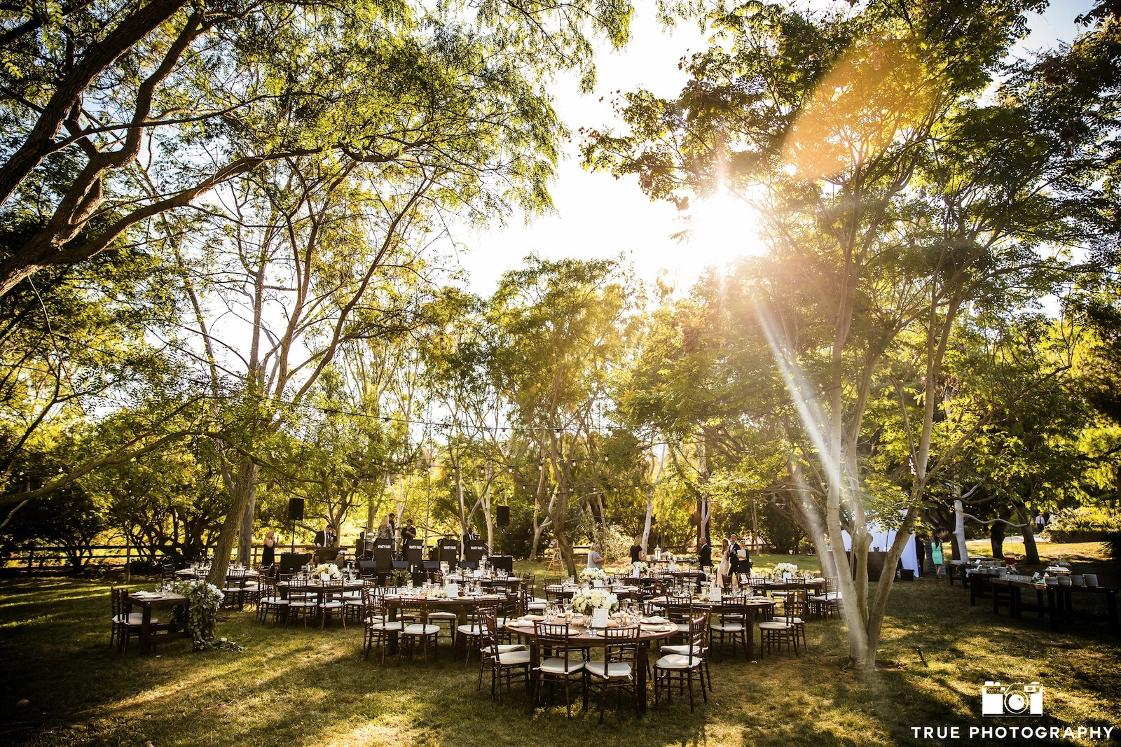 Backyard Wedding Venues In San Go