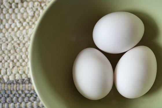 Urban Homesteading: Keeping Backyard Chickens in San Diego