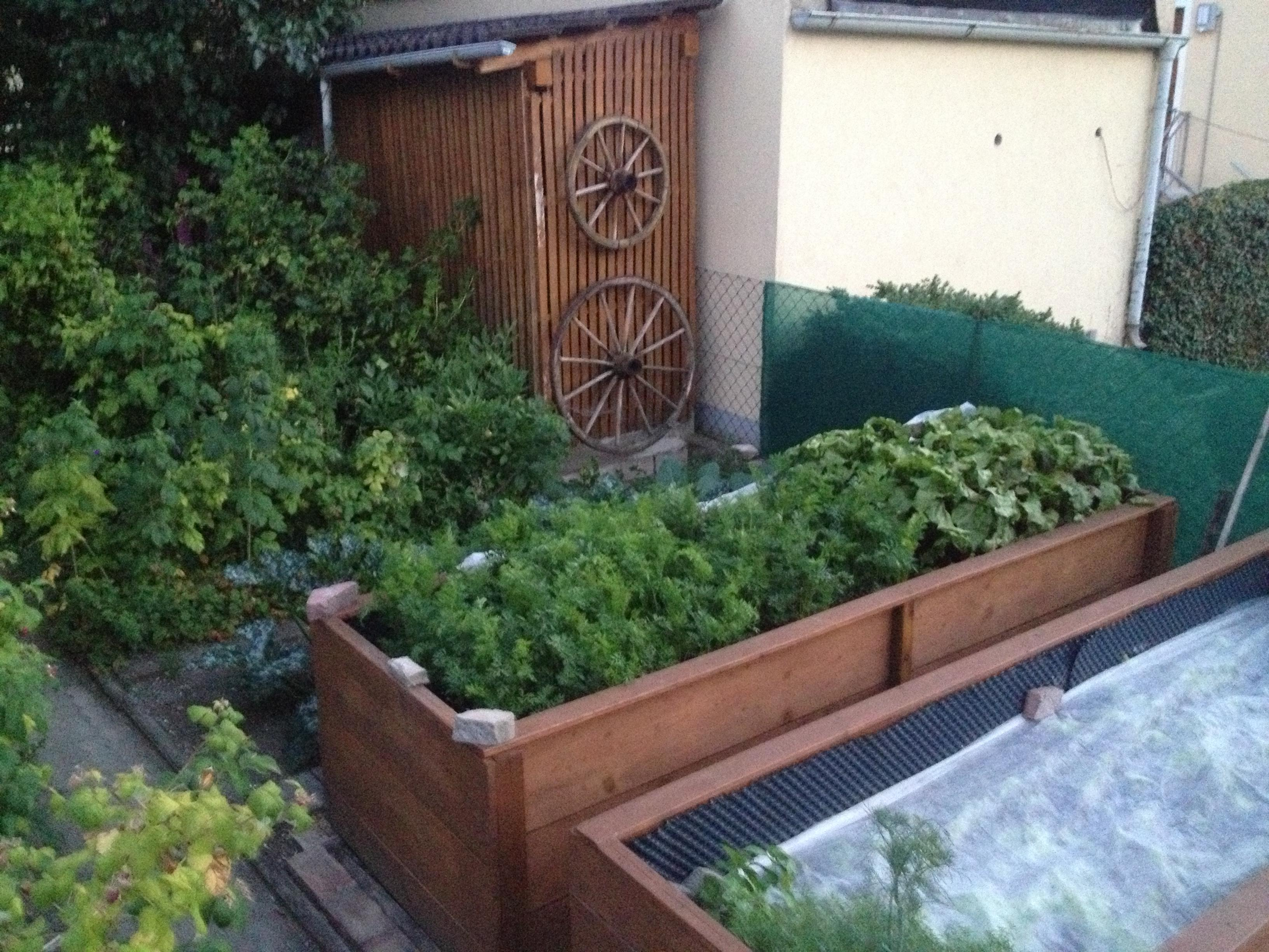 how to maximize garden space for urban farming install it direct