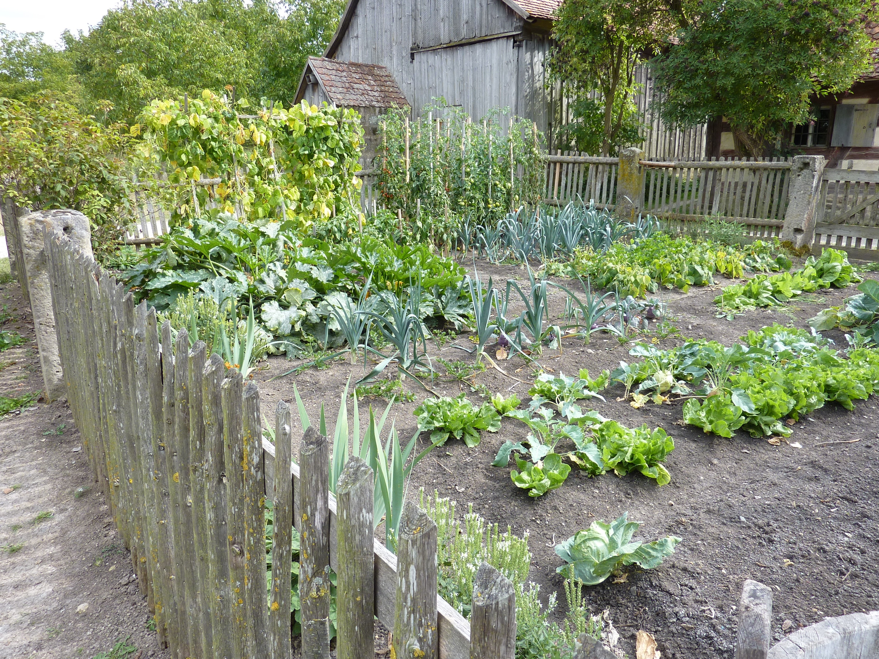 Planning A Kitchen Garden How To Maximize Garden Space For Urban Farming Install It Direct