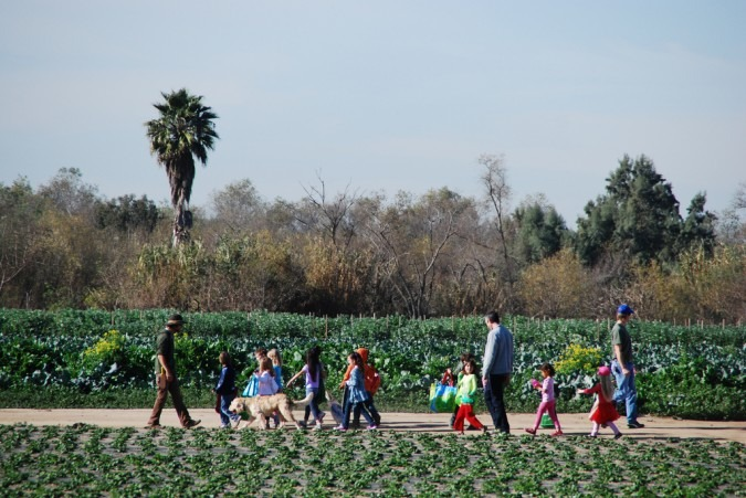 San Diego Community Supported Agriculture