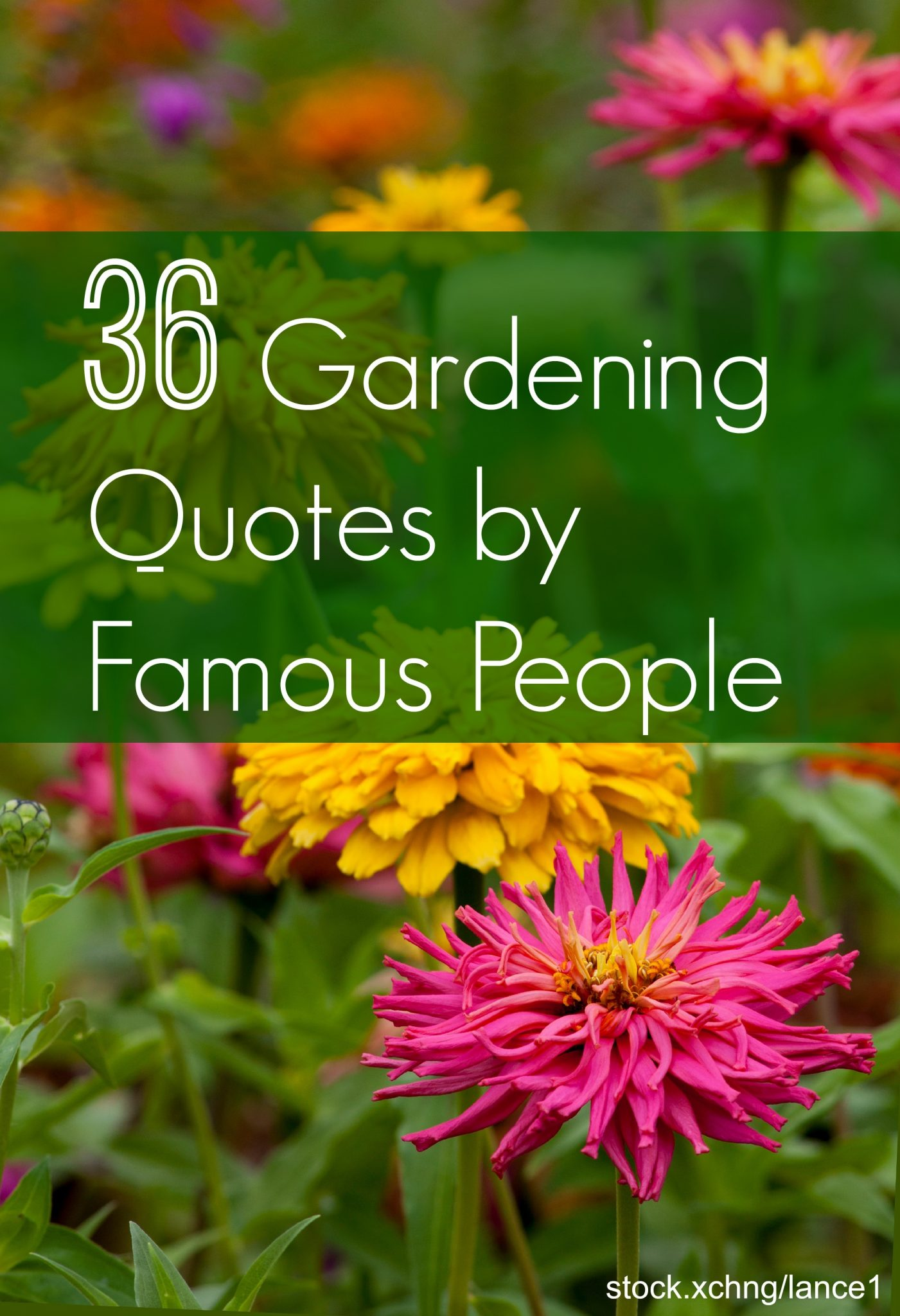 gardening quotes from famous people
