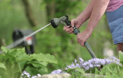 spring clean - lawns