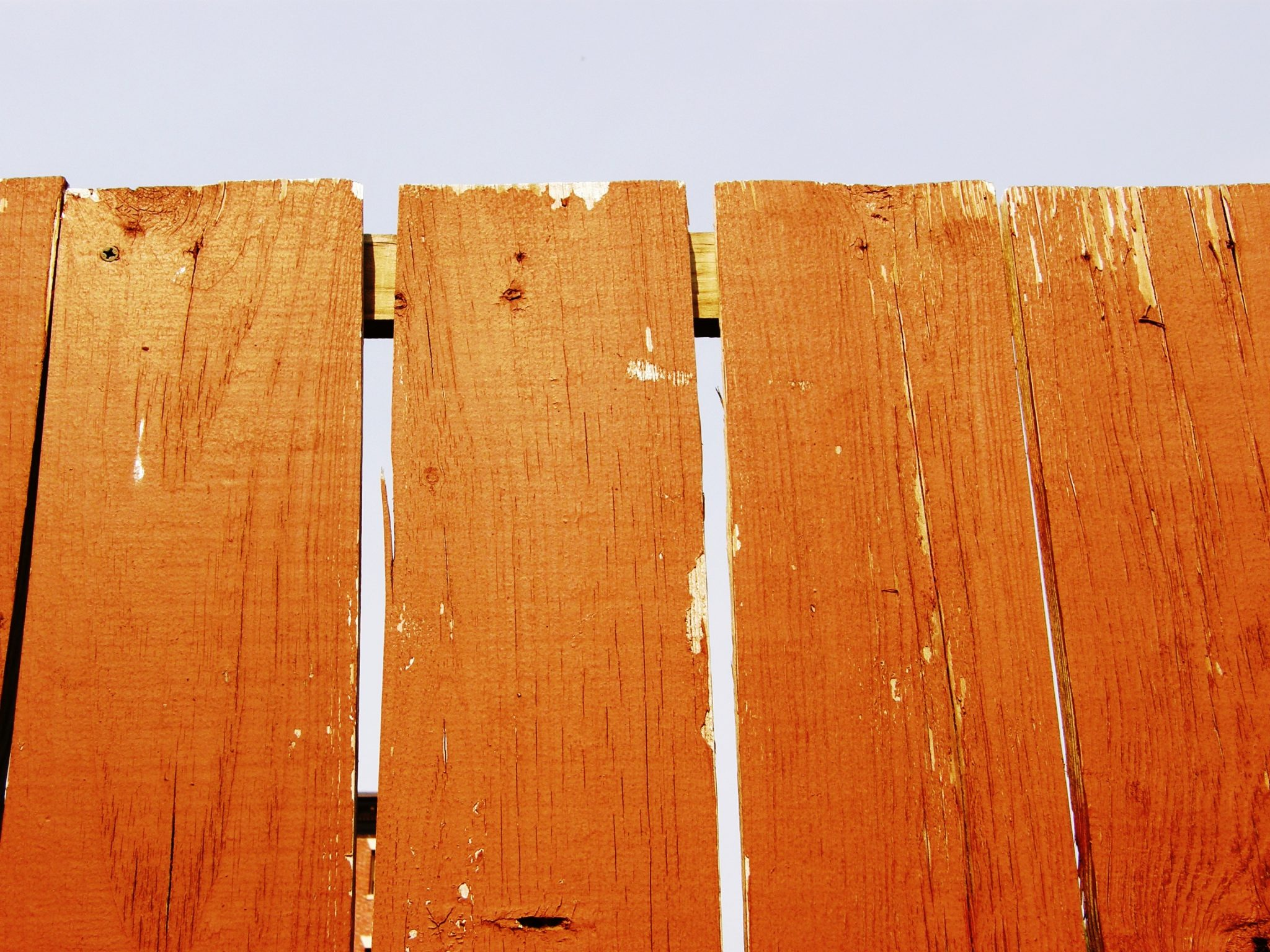 how to hide an ugly fence