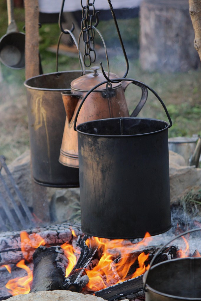 You no longer need fire to cook outdoors.