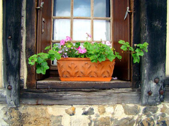 Containers can be placed on wide windowsills.