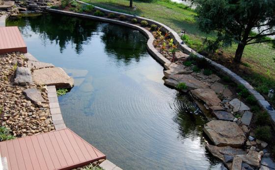 Natural Swimming Pools II