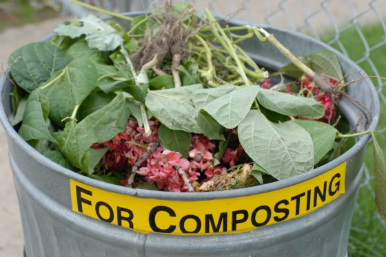reasons to use compost