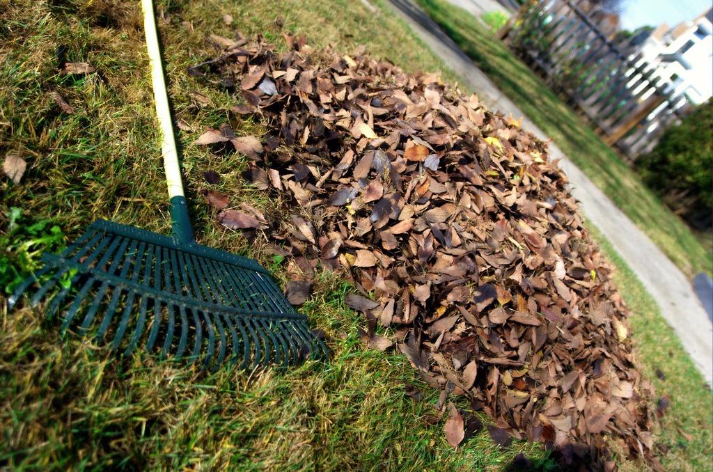 reduce green waste san diego
